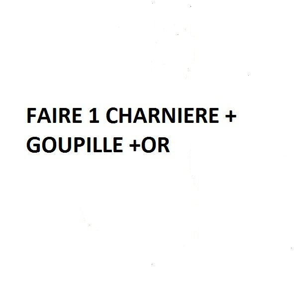 FAIRE UNE CHARNIERE + GOUPILLE +OR